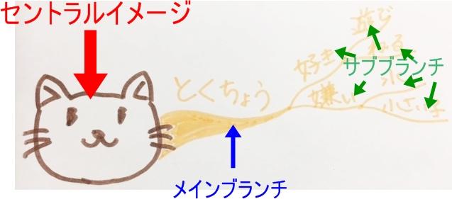 mindmap-cat